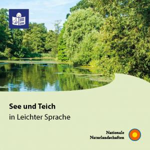 Themenheft See und Teich
